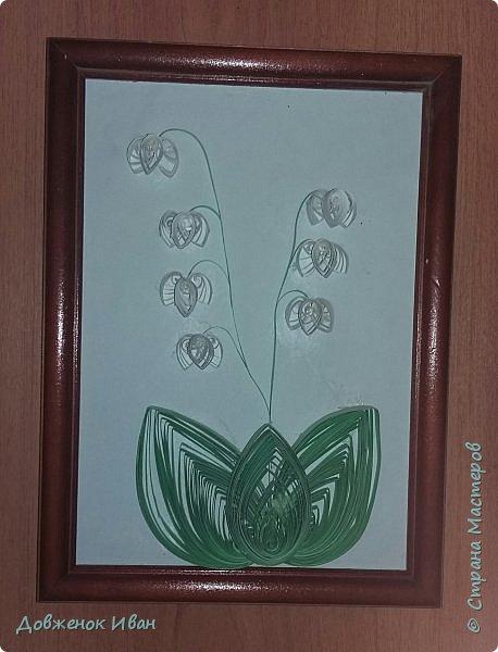"""Многолетнее травянистое растение высотой 15-20 см. От корневища отходят 2, реже 1-3 листа длиной около 20 см и тонкая цветочная стрелка, почти равная по длине листьям, окруженная у основания пленчатыми листочками. Сверху цветочной стрелки однобокой повислой кистью собраны приятно пахнущие белые цветки (5-20 штук), похожие на маленькие шарообразные колокольчики. Плод - красная ягода. Все растение ядовито. Цветет в апреле - июне, плодоносит в августе - сентябре. Ландыш известен с древности как ценное лекарственное растение.  Научное название майского ландыша происходит от греческих слов """"конваллис"""" - долина, """"лирион"""" - лилия и """"майялис"""" - майская, т. е. """"лилия долин, цветущая в мае"""".  Ландыш - любимый цветок многих народов, особенно французов, где в первое, майское воскресенье отмечают праздник ландышей.  Об этом растении сложены легенды. Одна из них рассказывает, как Ландыш влюбился в Весну, а когда она ушла, он горько плакал, и кровь выступила у него из сердца, и окрасила слезы - красные плоды, которые, появляются на стебле после цветения. (http://www.zooclub.ru/flora/lilii/11.shtml)  фото 7"""