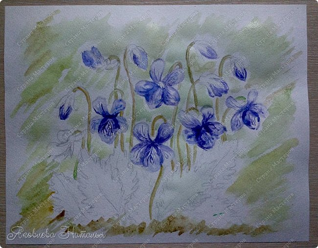 Фиалка надрезанная — один из нежнейших и прекраснейших цветков. Относящаяся к семейству фиалковых, она предпочитает расти на берегах рек, опушках хвойных лесов, каменистых склонах, лугах. Это бесстебельное растение в высоту достигает 3-6 см. Короткие черешки переходят в овальные перистонадрезанные листочки. Цветоносы оснащены узколанцетными прицветниками. Нежные чашелистики имеют эллиптическую форму, шпорец достигает в длину 5 мм, но главное очарование цветка — фиолетовые венчики. Размножается фиалка надрезанная семенами, которые образуются не каждый год. Поэтому неудивительно, что это нежное растение занесено в Красную книгу. http://cicon.ru/viola-incisa.html        фото 12