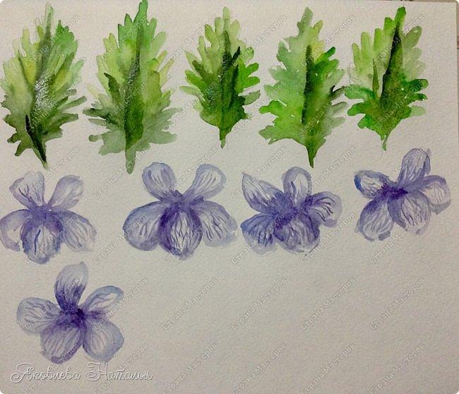 Фиалка надрезанная — один из нежнейших и прекраснейших цветков. Относящаяся к семейству фиалковых, она предпочитает расти на берегах рек, опушках хвойных лесов, каменистых склонах, лугах. Это бесстебельное растение в высоту достигает 3-6 см. Короткие черешки переходят в овальные перистонадрезанные листочки. Цветоносы оснащены узколанцетными прицветниками. Нежные чашелистики имеют эллиптическую форму, шпорец достигает в длину 5 мм, но главное очарование цветка — фиолетовые венчики. Размножается фиалка надрезанная семенами, которые образуются не каждый год. Поэтому неудивительно, что это нежное растение занесено в Красную книгу. http://cicon.ru/viola-incisa.html        фото 14