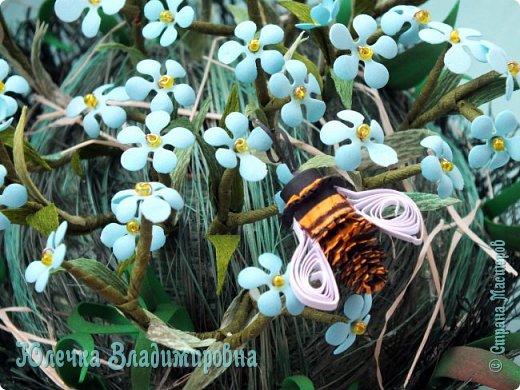 Их видимо-невидимо, Не сосчитаешь их! И кто их только выдумал — Весёлых, голубых? Должно быть, оторвали От неба лоскуток, Чуть-чуть поколдовали И сделали цветок. Автор: Е.Серова фото 21