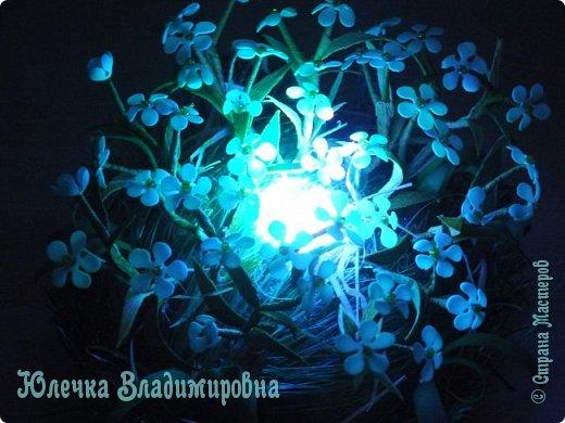 Их видимо-невидимо, Не сосчитаешь их! И кто их только выдумал — Весёлых, голубых? Должно быть, оторвали От неба лоскуток, Чуть-чуть поколдовали И сделали цветок. Автор: Е.Серова фото 3