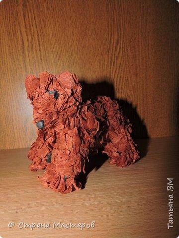 Многие считают, что медведи ленивые и неуклюжие животные. Но это заблуждение. На самом деле медведи очень энергичны и подвижны, очень ловко могут забираться на деревья.  Места обитания бурых медведей разбросаны по всему миру, но их становится все меньше. Поэтому их занесли в Красную книгу.       Сайлюгемская популяция бурого медведя занесена в красную книгу республики Алтай.  Алтайское название всех медведей –айу. На Алтае медведи- достаточно обычные, а кое-где еще и довольно многочисленные звери. Принятые меры по охране – кроме занесения в Красную книгу республики и соответствующего запрета на добычу медведей этой группировки Правилами охоты от 1996 г. другие меры охраны сайлюгемской популяции не предпринимались.  Необходимые меры охраны -  ужесточение контроля и штрафных санкций за добычу медведей этой популяции, широкая пропаганда необходимости охраны и сбережения редких животных в СМИ.    фото 5