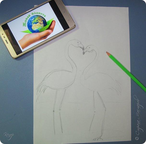Всем добрый день!!!! Какой замечательный конкурс снова для нас организовала Татьяна Николаевна!!!!! Мимо пройти невозможно! Для этого конкурса решила сделать чудо птицу - фламинго. Фламинго всегда меня привлекали своим изяществом и грацией. фото 8