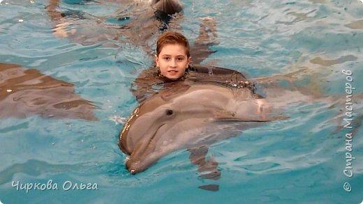 У большинства людей дельфины вызывают чувство необъяснимого восторга, искренности и нежности. Человек, хоть раз увидевший дельфинов, на всю жизнь влюбляется в этих удивительных животных.   фото 15