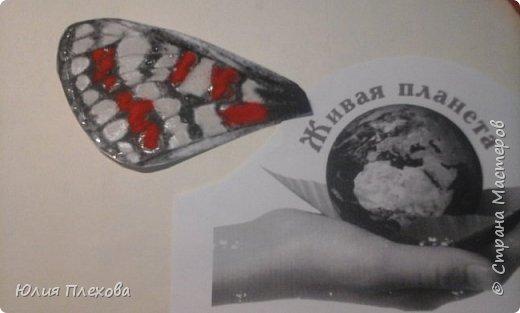 Вот такую бабочку сделали мы с дочкой. Простая в исполнении работа - магнит на холодильник, т.к. трудились вместе с дочкой, которая очень скучала на больничном. Маша - любитель бабочек и божьих коровок, поэтому выбор представителя животного мира был очевиден. Бабочку именно этого вида (а вариантов, которые нам нравились было много) мы решили делать только потому, что у нас нашлись остатки цветного песочка нужных расцветок. А выбирали мы бабочек в Красной книге Республики Коми. Не только потому, что мы живём в этом северном крае. В августе наша республика отмечает большой юбилей - 95 лет! Вот такой привет родному краю у нас получился. фото 6