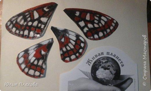 Вот такую бабочку сделали мы с дочкой. Простая в исполнении работа - магнит на холодильник, т.к. трудились вместе с дочкой, которая очень скучала на больничном. Маша - любитель бабочек и божьих коровок, поэтому выбор представителя животного мира был очевиден. Бабочку именно этого вида (а вариантов, которые нам нравились было много) мы решили делать только потому, что у нас нашлись остатки цветного песочка нужных расцветок. А выбирали мы бабочек в Красной книге Республики Коми. Не только потому, что мы живём в этом северном крае. В августе наша республика отмечает большой юбилей - 95 лет! Вот такой привет родному краю у нас получился. фото 7