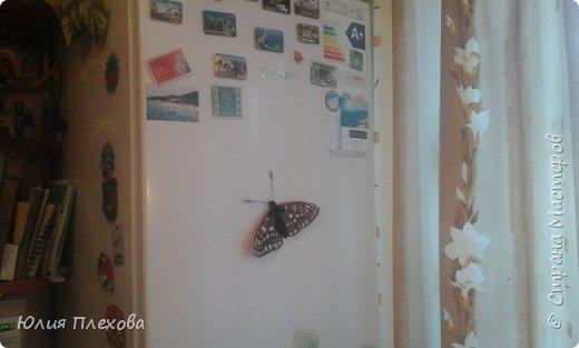 Вот такую бабочку сделали мы с дочкой. Простая в исполнении работа - магнит на холодильник, т.к. трудились вместе с дочкой, которая очень скучала на больничном. Маша - любитель бабочек и божьих коровок, поэтому выбор представителя животного мира был очевиден. Бабочку именно этого вида (а вариантов, которые нам нравились было много) мы решили делать только потому, что у нас нашлись остатки цветного песочка нужных расцветок. А выбирали мы бабочек в Красной книге Республики Коми. Не только потому, что мы живём в этом северном крае. В августе наша республика отмечает большой юбилей - 95 лет! Вот такой привет родному краю у нас получился. фото 12