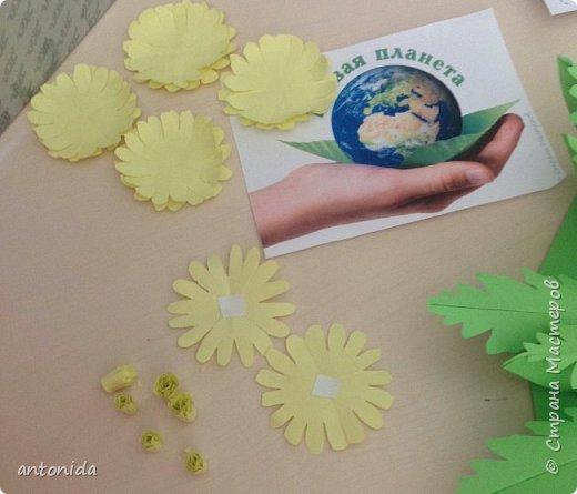 Адонис весенний - горицвет весенний, его яркие звездочки среди первых расцветают в лесу по весне. Но цветет он недолго, всего несколько недель.  фото 8