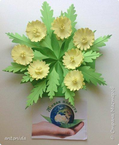 Адонис весенний - горицвет весенний, его яркие звездочки среди первых расцветают в лесу по весне. Но цветет он недолго, всего несколько недель.  фото 9