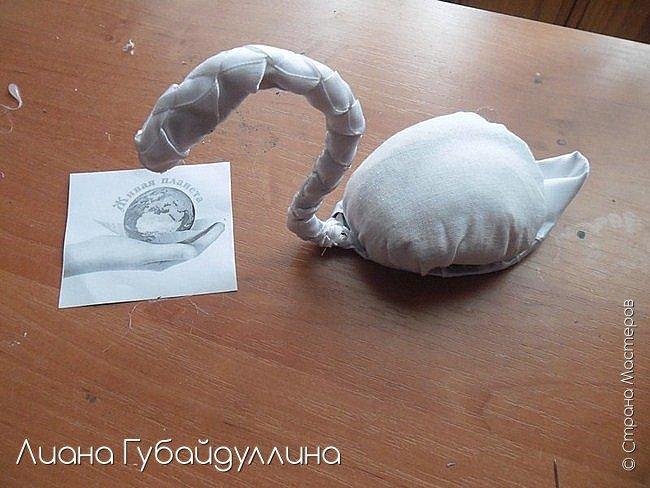 Белый лебедь-шипун  фото 6
