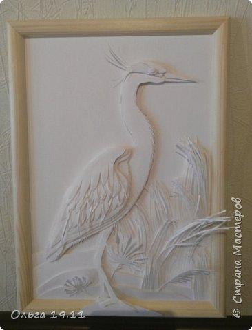 Серая цапля - санитар водоёмов. ( http://animalreader.ru/seraya-tsaplya-sanitar-vodoemov.html)  Вес взрослой серой цапли достигает 1,5 кг, а некоторые экземпляры вырастают и до 2 кг. Размах крыльев птицы составляет 1,5 – 1,75 м, а длина тела до 102 см. фото 1