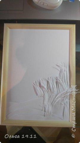Серая цапля - санитар водоёмов. ( http://animalreader.ru/seraya-tsaplya-sanitar-vodoemov.html)  Вес взрослой серой цапли достигает 1,5 кг, а некоторые экземпляры вырастают и до 2 кг. Размах крыльев птицы составляет 1,5 – 1,75 м, а длина тела до 102 см. фото 14