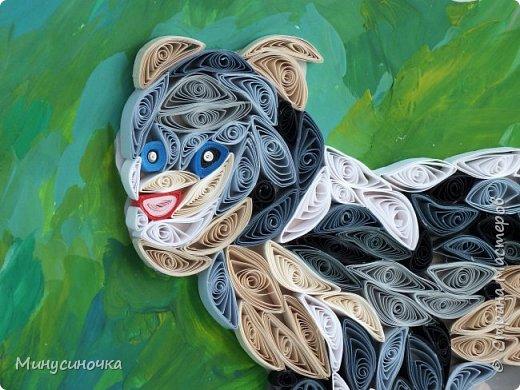 И снова спускается с горных вершин,     Рычит и крадется пятнистая кошка.     Большими прыжками прыгает вниз     И от добычи - рожки  и ножки!     Смелый, охотник - вообще высший класс! Узнали его?      Это он - Снежный барс!                                                        Автор: Нечаева Анна фото 8