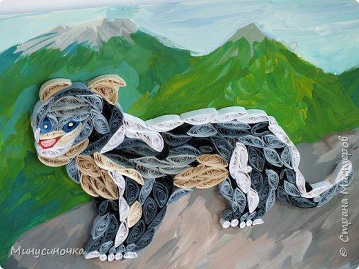 И снова спускается с горных вершин,     Рычит и крадется пятнистая кошка.     Большими прыжками прыгает вниз     И от добычи - рожки  и ножки!     Смелый, охотник - вообще высший класс! Узнали его?      Это он - Снежный барс!                                                        Автор: Нечаева Анна фото 9