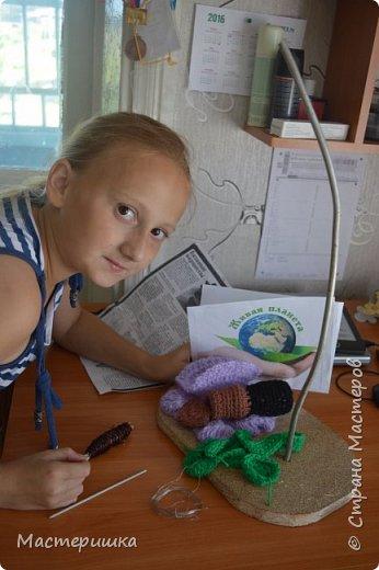 Продолжаю показывать работы моих девочек. На этот раз, будем знакомится с муравьём Долиходерус сибирский. При создании работы читали и смотрели только Красную книгу Алтая. фото 7