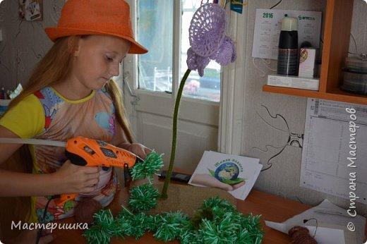 Продолжаю показывать работы моих девочек. На этот раз, будем знакомится с муравьём Долиходерус сибирский. При создании работы читали и смотрели только Красную книгу Алтая. фото 8