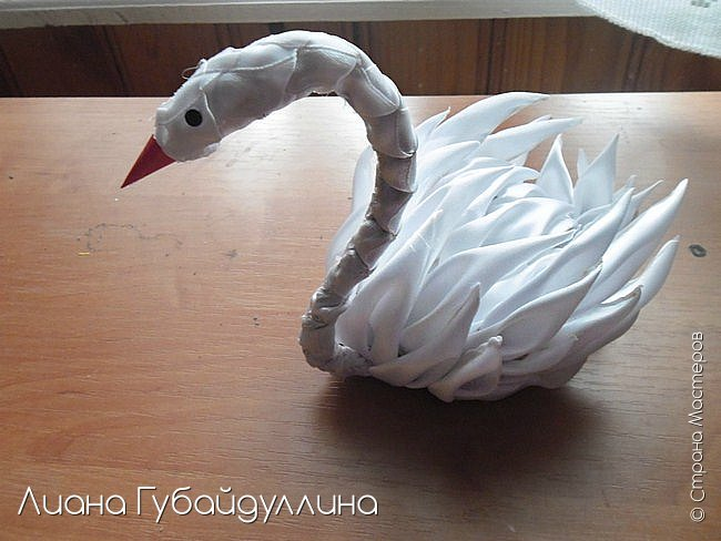 Белый лебедь-шипун  фото 1