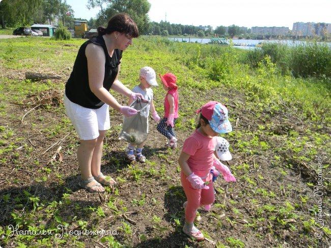 """..Зелёная жаба. Зовут """"Квакша"""". Появилась и посилилась у нас в группе детского сада в процессе проекта """"Эти  удивительные  существа -  лягушки и жабы"""" фото 23"""