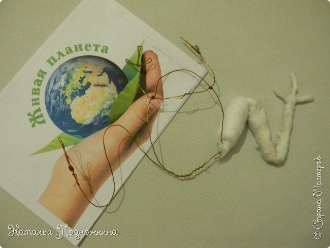 """..Зелёная жаба. Зовут """"Квакша"""". Появилась и посилилась у нас в группе детского сада в процессе проекта """"Эти  удивительные  существа -  лягушки и жабы"""" фото 6"""