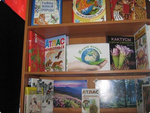 В пришкольный лагерь «Малышок» мы пришли, Друзей и подруг быстро нашли. Наталья Геннадьевна нам сообщила, Что «Страна Мастеров» новый конкурс   открыла «Живая природа».  фото 3
