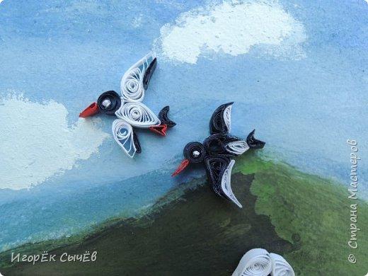 В своей работе я хочу отобразить многообразный вид пернатых занесенных в Красную книгу Алтайского края. Я постарался максимально точно передать всю красоту следующих птиц: Журавль-красавка, Черный аист, Обыкновенный фламинго, Розовый пеликан, Большая белая цапля, Турпан, Ходулочник, Кулик-сорока, Синий соловей. Птиц я разместил на фоне Алтайских гор возле озера Ая. Работа выполнена в технике Квиллинг. фото 9