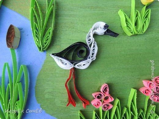В своей работе я хочу отобразить многообразный вид пернатых занесенных в Красную книгу Алтайского края. Я постарался максимально точно передать всю красоту следующих птиц: Журавль-красавка, Черный аист, Обыкновенный фламинго, Розовый пеликан, Большая белая цапля, Турпан, Ходулочник, Кулик-сорока, Синий соловей. Птиц я разместил на фоне Алтайских гор возле озера Ая. Работа выполнена в технике Квиллинг. фото 8