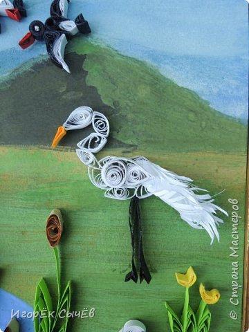 В своей работе я хочу отобразить многообразный вид пернатых занесенных в Красную книгу Алтайского края. Я постарался максимально точно передать всю красоту следующих птиц: Журавль-красавка, Черный аист, Обыкновенный фламинго, Розовый пеликан, Большая белая цапля, Турпан, Ходулочник, Кулик-сорока, Синий соловей. Птиц я разместил на фоне Алтайских гор возле озера Ая. Работа выполнена в технике Квиллинг. фото 6