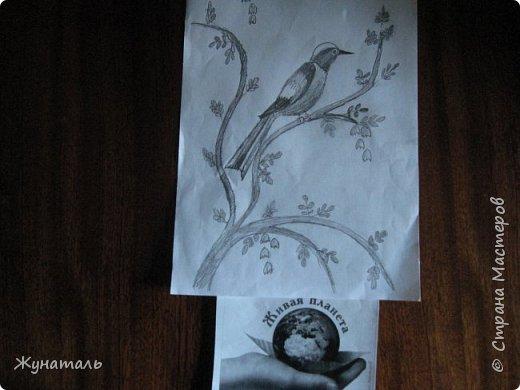 Здравствуй, Страна Мастеров. Представляю вторую конкурсную работу-Горихвостка. Эта птичка мне сразу понравилась. когда я просматривала материалы Красных книг.Птица эта редкая, малоизученная, нуждается в защите и охране. Да и обитает она и в Алтайском крае, и у нас на Кавказе. Поэтому выбор мой был очевиден. фото 3