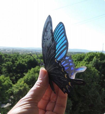 Редко кому повезет увидеть это чудо природы в естественных условиях. фото 20