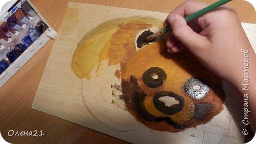 Бурый медведь фото 2