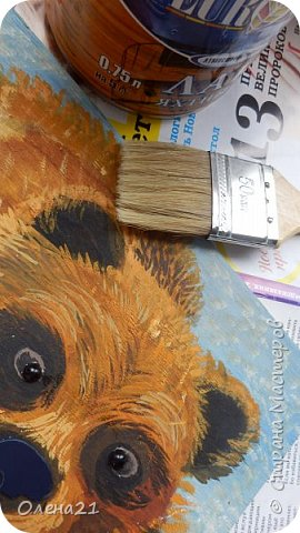 Бурый медведь фото 11