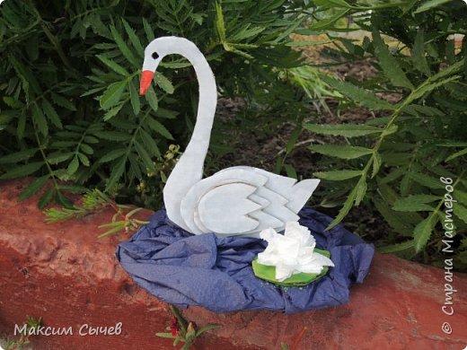 В своей работе я сделал прекрасного маленького лебедя.Который обитает и занесен в Красную книгу Алтайского края. фото 1
