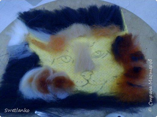 Знакомьтесь - рысь обыкновенная или европейская. Окраска меха очень разнообразна по цвету (от пепельно-голубой до красно-рыжей) и характеру пятнистости - от одноцветной до резко пятнистой, конец хвоста чёрный. От каракала отличается длинным мехом, коротким хвостом, более короткой головой, наличием на щеках баков. От других крупных кошек - коротким хвостом, от мелких кошек - размерами. Географическая изменчивость окраски и размеров очень велика, охотники и пушники выделяют несколько кряжей, описано много форм, из которых реальными признаются около 13 подвидов, на территории бывшего СССР обитают 8. фото 6
