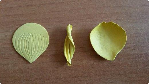 """Добрый день всем! Мы с удовольствием участвуем в этом конкурсе. Для работы выбрали тему """"Царство растений"""" и попытались изобразить часть водоёма, где растёт жёлтая кубышка. Кубышка жёлтая имеет народные названия: жёлтая кувшинка, одолень, вахта речная, вахта лесная, маковки водяные, мор куриный, мак жёлтый водяной,балаболка, бубенчики жёлтые, водолёт, вахтовик жёлтый, горляшное семя, лопух водяной, пуговка ...( lilitochka.ru ) Кубышка жёлтая - удивительной красоты растение. Своё русское название оно получило из-за схожести созревшего плода со старинным сосудом с крышечкой, которым пользовались на Руси. Это многолетний представитель водной флоры. Кубышка жёлтая распространена во многих регионах России, кроме областей Дальнего Востока и Крайнего Севера. Места её произрастания - заливы,озёра,пруды, речные тихие мелководья. Корневище растения очень ветвистое, от него расползаются десятки корней по дну водоёма. Диаметр зависит от возраста кубышки - корень взрослого растения может достигать 10 см в толщину. Стебель кубышки жёлтой практически полностью скрыт под водой, на поверхности остаётся лишь небольшая часть с цветком. Он упругий и длинный,порой достигает 2-3 метра. Мясистые крупные листья лежат на воде. Они ярко зелёного цвета,блестят на солнце, но есть и мелкие и тонкие подводные листья , часто свёрнутые и образующие подобие колпачка. Цветы кубышки жёлтые. Его """"лепестки"""" являются чашелистиками. Они окружают цветок и защищают его. В плохую погоду и в ночное время они закрыты. Большая часть цветка - тычинки с пыльниками. В центре расположена многозвеньевая завязь, в которой образуется плод растения.плод напоминает кувшин,в котором спрятаны семена. Период цветения - с мая по август. ( w w w/ anapacity. com./krasnya - kniga - Krasnodarckogo - kraya - rasteniya/ kybyshka - zheltaya.html) фото 12"""