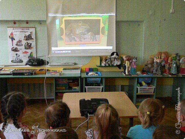 """..Зелёная жаба. Зовут """"Квакша"""". Появилась и посилилась у нас в группе детского сада в процессе проекта """"Эти  удивительные  существа -  лягушки и жабы"""" фото 22"""