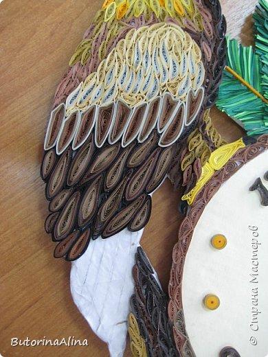 """Когда я увидела эту гордую и красивую  птицу, у меня не осталось сомнений, что именно ей хочу посвятить свою поделку. Над своей работой мы с педагогом работали долго. Старались чтобы образ соответствовал именно этой птице. Старались передать не только цвета, форму, но и посадили ее на ветку сосны, так как свои гнезда беркут строит на скалах и на хвойных деревьях. Для этого мы изучили Красную книгу Алтайского края и журнал минэкологии Нижегородской области """"Хищные птицы"""". Беркут самый крупный из орлов. В переводе с английского обозначает """"золотая птица"""". Размах крыльев около двух метров. Для сохранения хищных птиц необходимо бережное отношение к ним. А так же я узнала из Красной книги, что необходимо запретить применение отравленных приманок в борьбе с волками. За основу часов взят """"спил"""" дерева. Вокруг """"спила"""" ветки сосны с шишками, на ней сидит беркут. А время идет своим чередом. фото 13"""