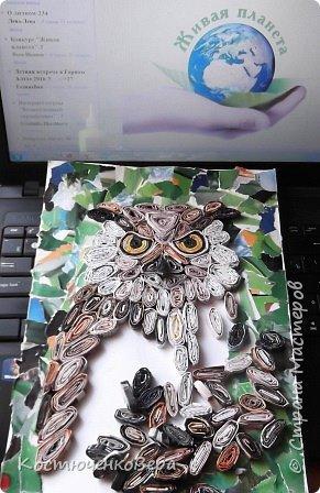 """Филин- редкая птица. Она в Красной книге не только Горного Алтая, но и других регионов России и стран. Крупная птица, до 4-х кг самка, самцы меньше, размах крыльев до 2-х метров. Отличительная особенность птицы """"ушки""""- пучки перьев на голове, этим филин отличается от совы, хотя и сам он - сова. фото 7"""