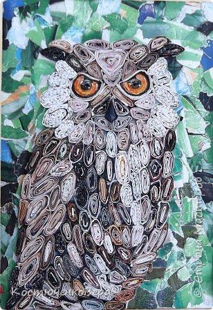 """Филин- редкая птица. Она в Красной книге не только Горного Алтая, но и других регионов России и стран. Крупная птица, до 4-х кг самка, самцы меньше, размах крыльев до 2-х метров. Отличительная особенность птицы """"ушки""""- пучки перьев на голове, этим филин отличается от совы, хотя и сам он - сова. фото 1"""