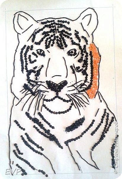 Амурский тигр - редкий подвид, сохранившийся лишь на территории России. Мы решили сделать тигра из крупы, использовали чечевицу красную, покрасила её для полосок в чёрный цвет акриловыми красками, макароны паутинка также покрашены в чёрный цвет. фото 6