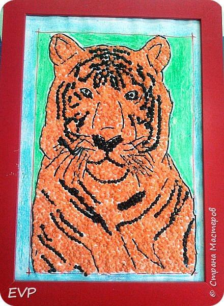 Амурский тигр - редкий подвид, сохранившийся лишь на территории России. Мы решили сделать тигра из крупы, использовали чечевицу красную, покрасила её для полосок в чёрный цвет акриловыми красками, макароны паутинка также покрашены в чёрный цвет. фото 1