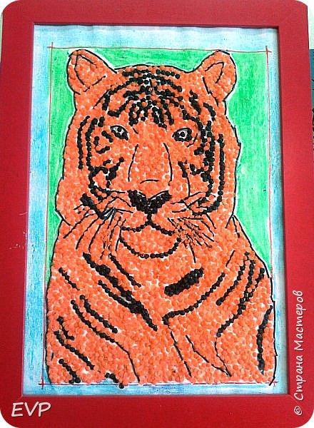 Амурский тигр - редкий подвид, сохранившийся лишь на территории России. Мы решили сделать тигра из крупы, использовали чечевицу красную, покрасила её для полосок в чёрный цвет акриловыми красками, макароны паутинка также покрашены в чёрный цвет. фото 8