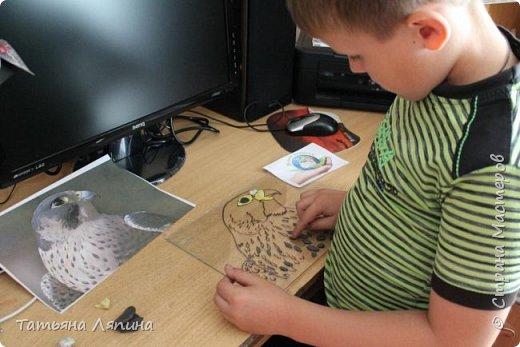 Здравствуйте! Представляю работу моего сына. Она выполнена в технике- обратная аппликация из пластилина. Сын очень любит лепить. Предложила ему выполнить картину в этой технике. Долго выбирали что изобразить на картине. Сына привлекла птица сапсан. фото 3