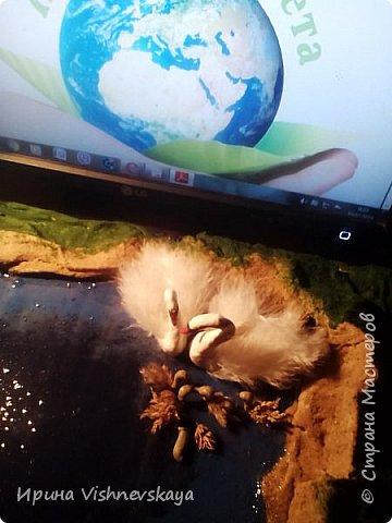 Добрый день. Я хочу рассказать о природе родного для моих детей и ставшего родным для меня края – Тверской области. Свою работу мы назвали «Райский уголок Верхневолжья». Ставшие редкими и совсем переставшие гнездиться в здешних краях птицы на нашем маленьком озере даже выводят птенцов. Мы постарались передать местный ландшафт, красоту озер и лесов. фото 9