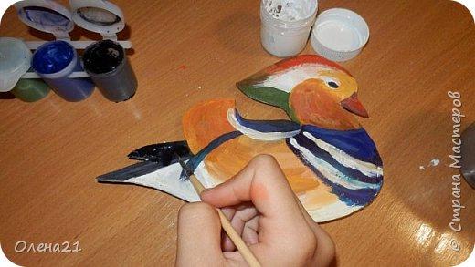 Здравствуйте, жители Страны Мастеров!  Меня зовут мандаринка. Я лесная утка, семейства утиных. Живу на территории Дальнего Востока. Зимую в Китае или Японии. фото 5