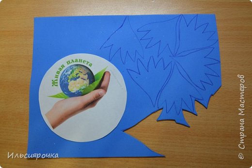Василёк – травянистое растение семейства сложноцветных. Существует свыше 500 видов, в России произрастает около 180 видов. 7 видов василька находятся в Красной книге России (один из них василёк Талиева с жёлтыми цветками). На Ямале встречается один из видов - василёк синий. фото 2