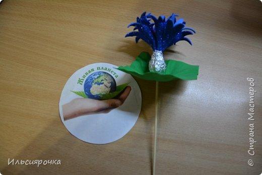 Василёк – травянистое растение семейства сложноцветных. Существует свыше 500 видов, в России произрастает около 180 видов. 7 видов василька находятся в Красной книге России (один из них василёк Талиева с жёлтыми цветками). На Ямале встречается один из видов - василёк синий. фото 5