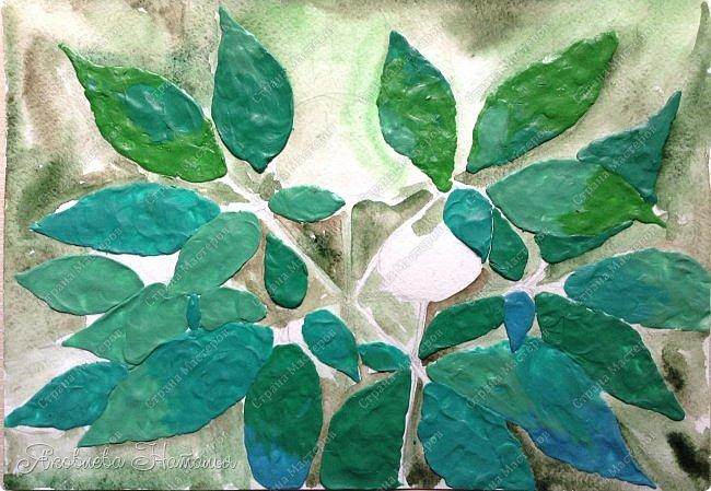 """Когда Ксюша узнала о конкурсе, сразу сказала про женьшень, о котором им рассказывали в школе. Женьшень - травянистое растение с крупным стержневым корнем. Листья небольшие, овальной формы. Высота взрослого растения – 60-80 см. Растет женьшень очень медленно. Цветет в июле, образуя один цветонос, на котором многочисленные зеленовато-белые цветки сформированы в соцветия – зонтики. Небольшие ярко-красные, чуть приплюснутые плоды созревают к концу лета. В природе женьшень растет около 100 лет. Размножается семенами. Женьшень – одно из самых древних лекарственных растений. Уже три тысячи лет назад народные целители использовали его в медицинских целях. Систематическое описание лечебных свойств женьшеня было предпринято в Китае во времена правления императора Шень-нуна. За огромную пользу этого чудодейственного растения китайский император назвал женьшень """"королевской травой"""". В Европу корни женьшеня впервые были завезены в XVIII в. из Азии. В России с ними познакомились чуть раньше – в конце XVII в. фото 6"""