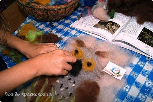 Филин - очень красивая и полезная для степи и леса птица! фото 6