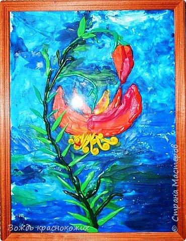 Я очень люблю цветы, занимаюсь изготовлением духов из цветочных экстрактов (я делаю их сам). Чтобы узнать, какие цветы нельзя использовать в парфюмерии из-за их редкости, я читаю Красную книгу Красноярского края. Там я увидел лилию узколистную. фото 1