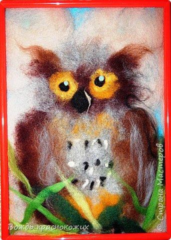 Филин - очень красивая и полезная для степи и леса птица! фото 1